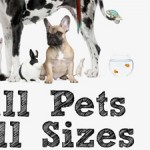 Group logo of Pet Care